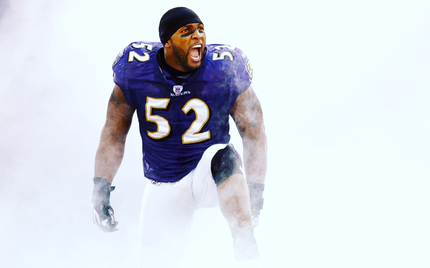 Baltimore Ravens Ray Lewis Career Earnings